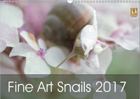 New !! Snail Fine Art Calendar 2017