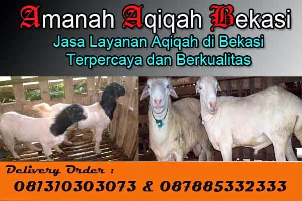 Jual_Kambing_Aqiqah_Bekasi