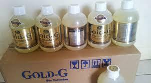 pengobatan asam urat tinggi dengan jelly gamat gold g