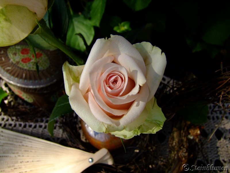 Tischdeko rosa Rosen