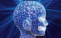 Η συνείδηση είναι έμφυτη ή επίκτητη; Μαθηματική αποκωδικοποίηση του εγκεφάλου,έμφυτη, Αριστοτέλης, επίκτητη, Θ.Φωκάς, Ιπποκράτης, μαγνητοεγκεφαλογραφία, νευροεπιστήμη, νευρώνες, Πλάτων, συνείδηση