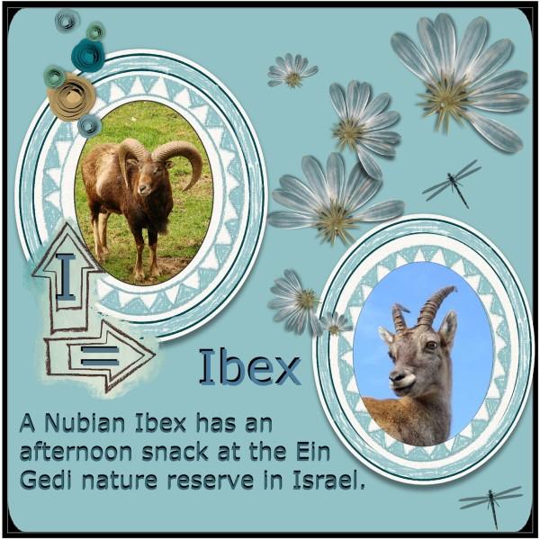 Sept.2016 - I = Ibex