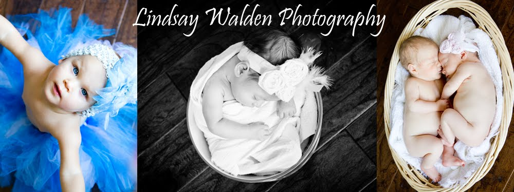 Lindsay Walden Photography
