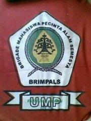 BRIMPALS