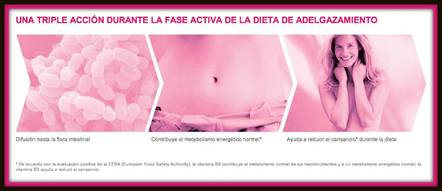 Diet Partner Fase Reductora