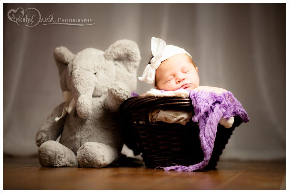 newborn next to stuffed animal turlock CA