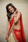 vithika sheru half saree photos-thumbnail-20