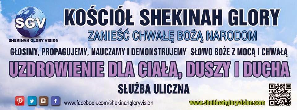 SHEKINAH GLORY VISION