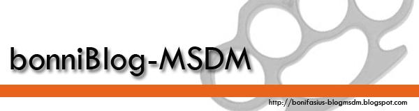 bonniBlog-MSDM