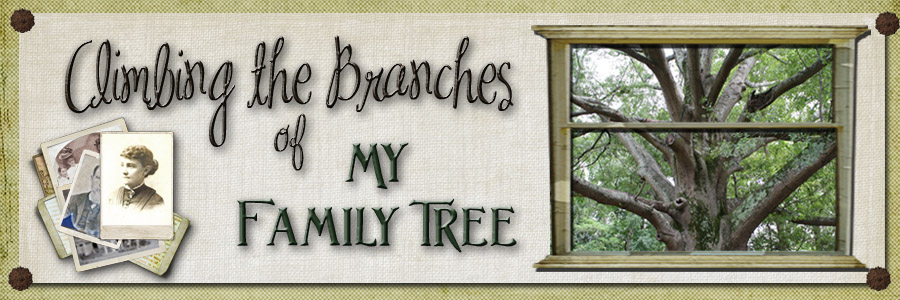 Climbing the Branches of My Family Tree