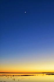 Coongie sunrise