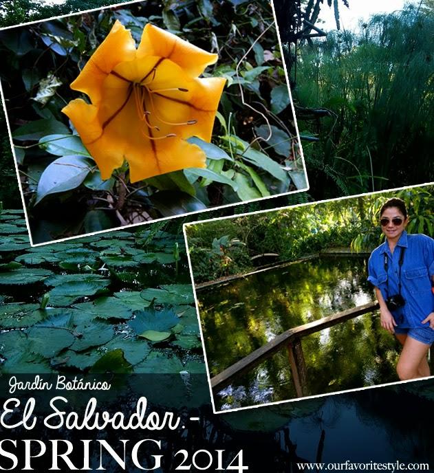 Jardin botanico el salvador our favorite style for El jardin botanico