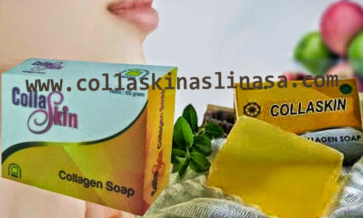 Isi Paket Collaskin Collagen PT. NASA