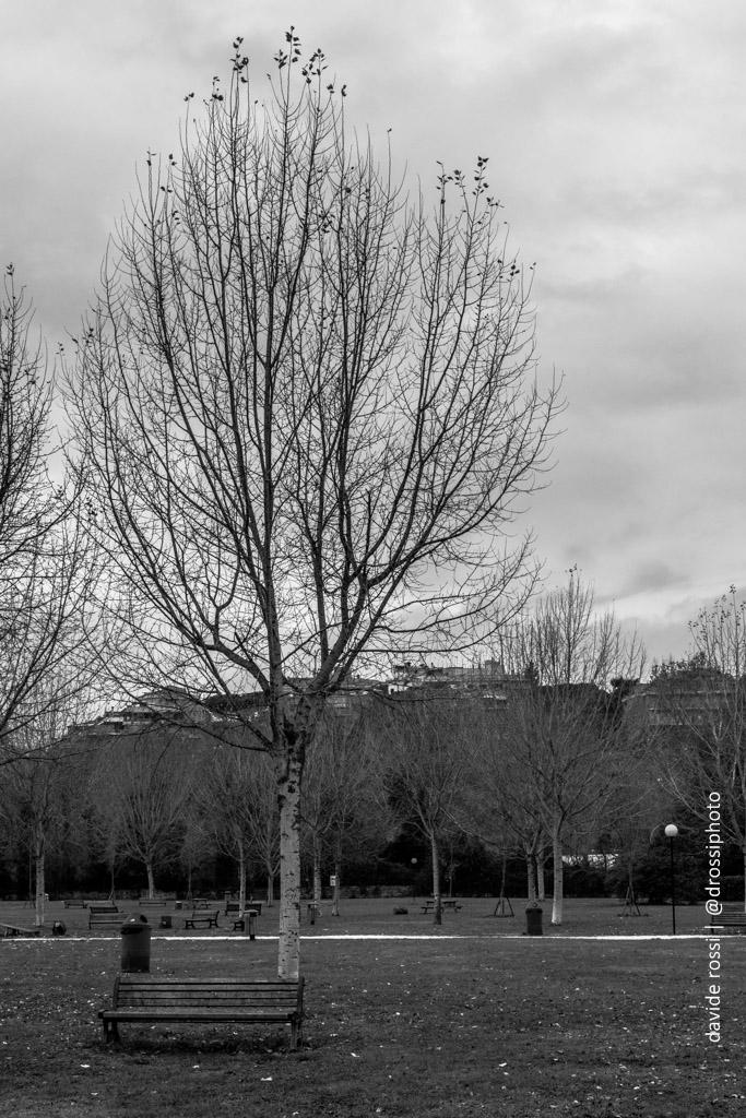 Roma - parco a Grotta Rossa