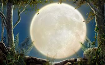 #16 Full Moon Wallpaper