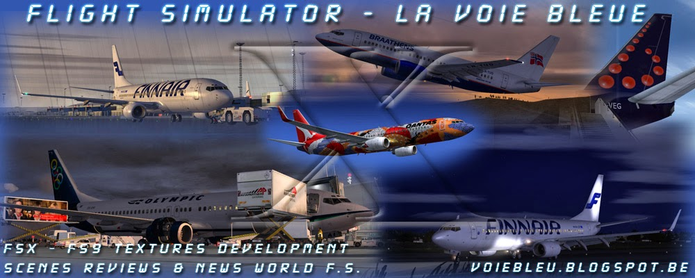 FLIGHT SIMULATOR  -  REPAINTS & DEVELOPMENT