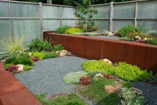 taman kering minimalis belakang rumah