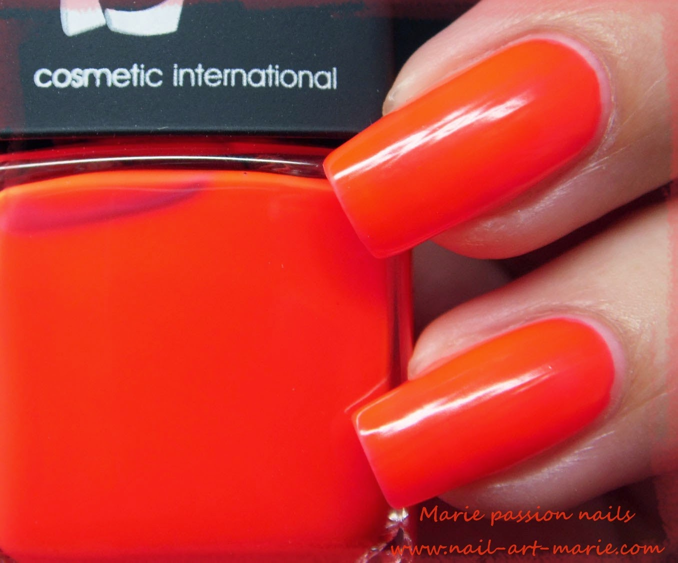 LM Cosmetic San Fransisco4