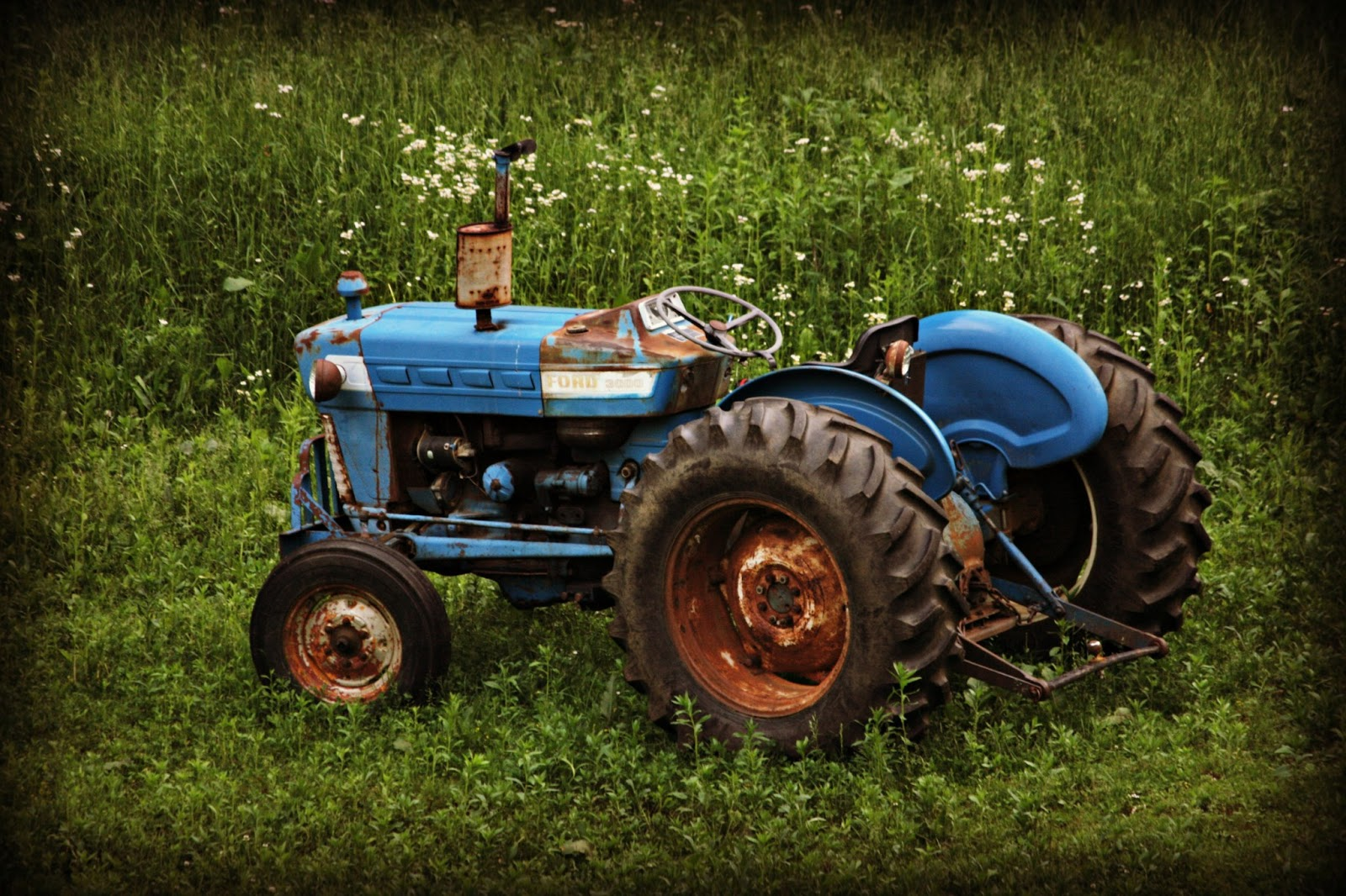 Old Ford Backhoe : Two bears farm and the three cubs steiner new parts for