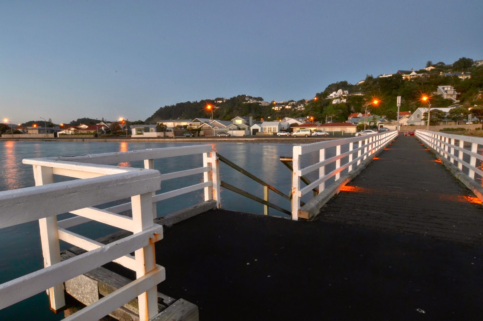 Seatoun from the Pier