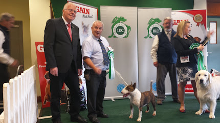 IKC ALL BREED INTERNATIONAL CHAMPIONSHIP DOG SHOW to DUBLIN (1th day)