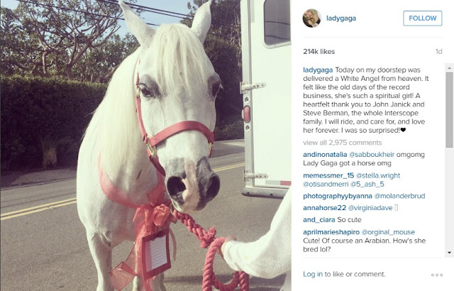 A surprising beautiful pony was gifted to Lady Gaga for cristmas from her record label