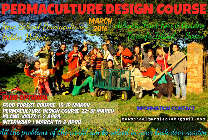 Spring Permaculture Design Course and Food Forest Course