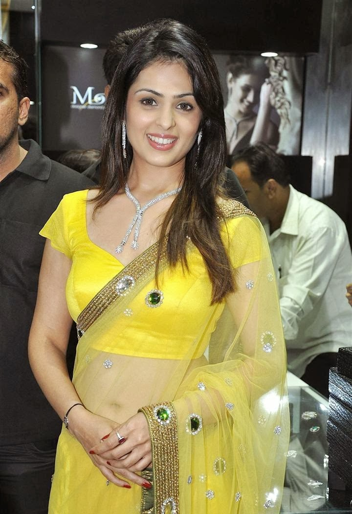 Anjana Sukhani hot navel show Photo in transparent saree hd wallpapers
