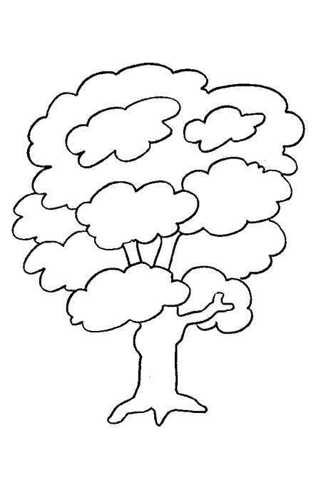 Image dense tree branches for kids coloring