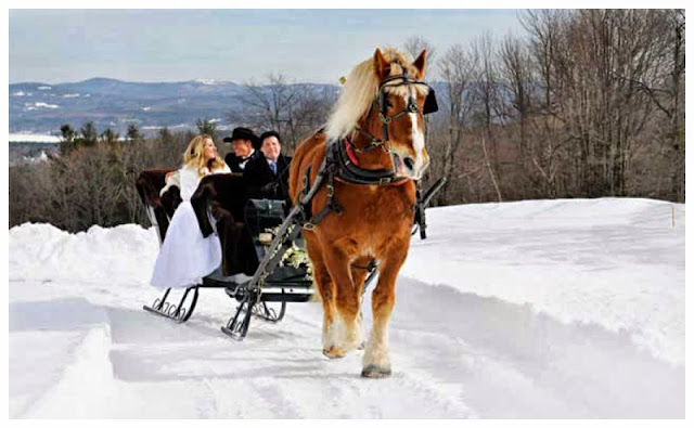 wedding sleigh ride