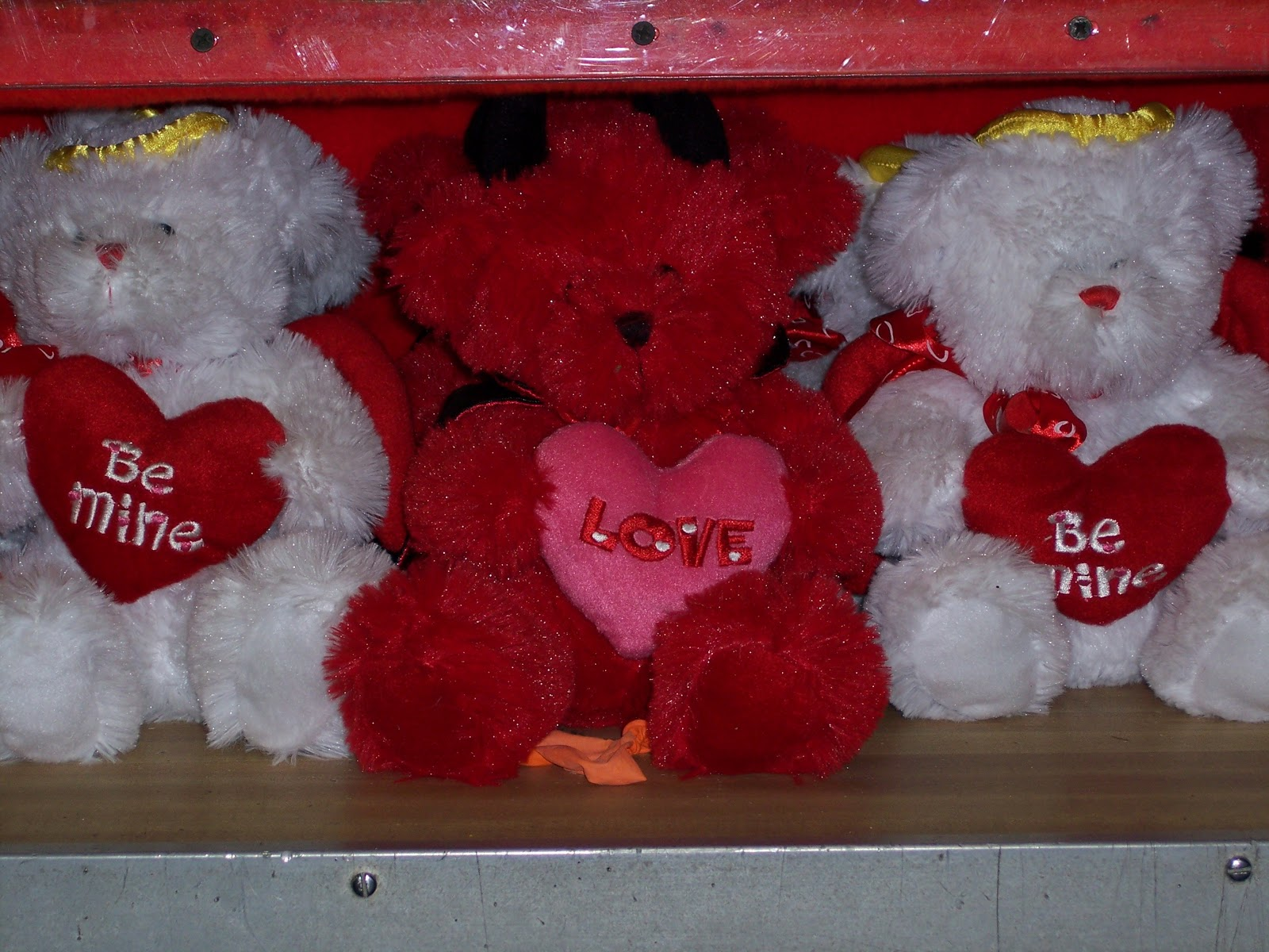 Big Teddy Bears At Walmart Hot Girls Wallpaper