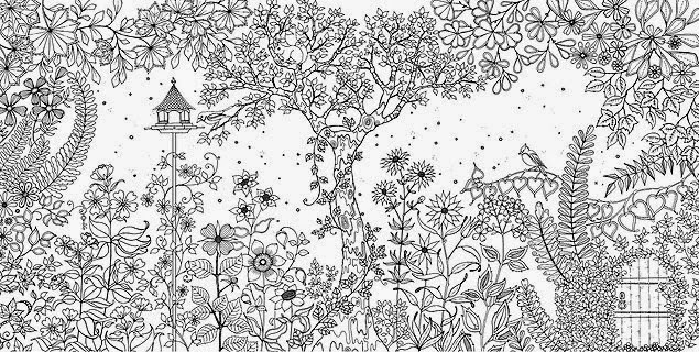 desenhos para colorir o jardim secreto