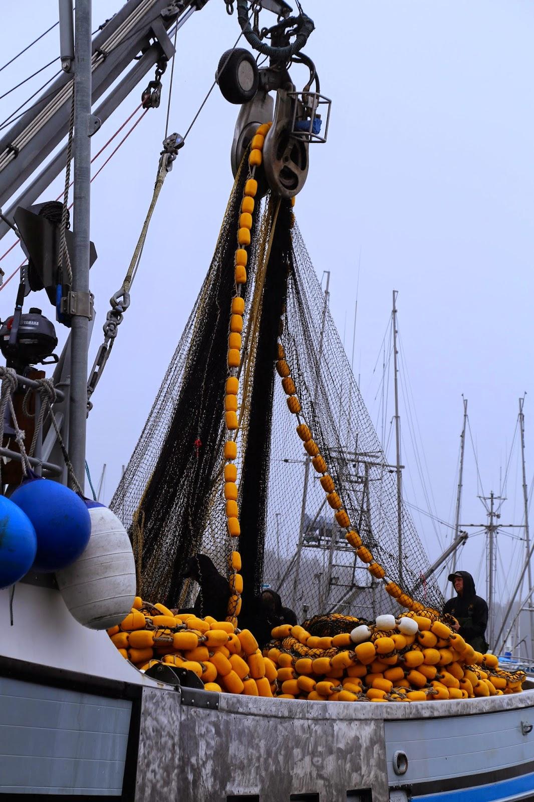 fishing boat, purse seining, sitka, alaska