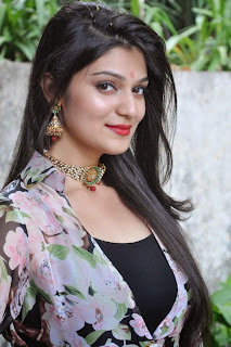 Actress Siya Gautham Picture Gallery in Long Dress at Pilavani Perantam Telugu Movie Opening  12.jpg