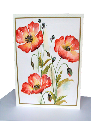 three, trio, poppies, blooms,spring,painting,garden,buds,petals,floral
