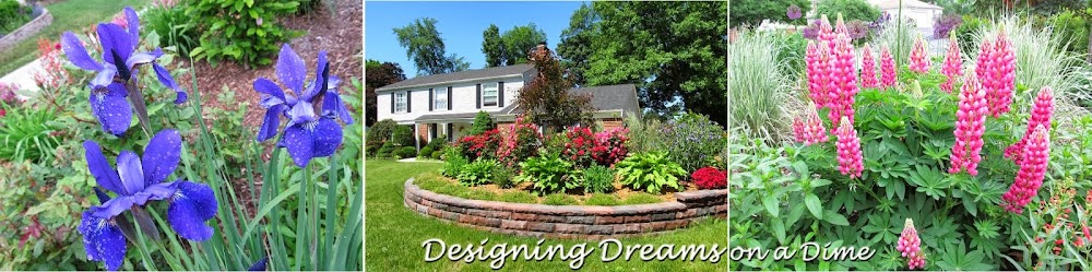 Designing Dreams on a Dime