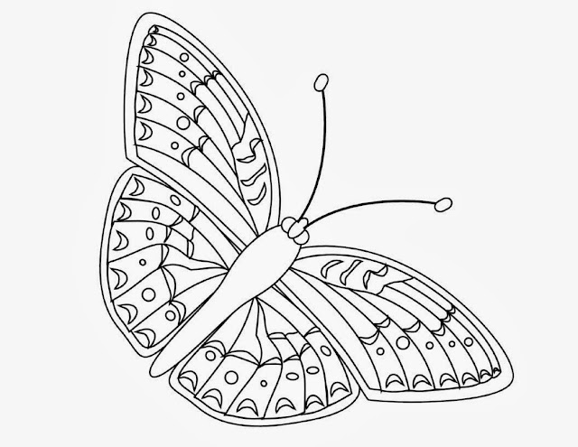 Beautiful Butterfly Coloring Drawing Free wallpaper