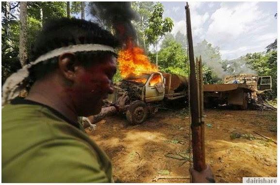 Orang Asli Hutan Amazon Mengamuk Bakar Lori Dan Belasah Pembalak
