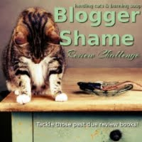 Blogger Shame Challenge