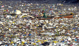 What is the Pacific Ocean Garbage Patch?