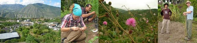 PERUCHO ORGANIC AGRICULTURE EXPERIENCE