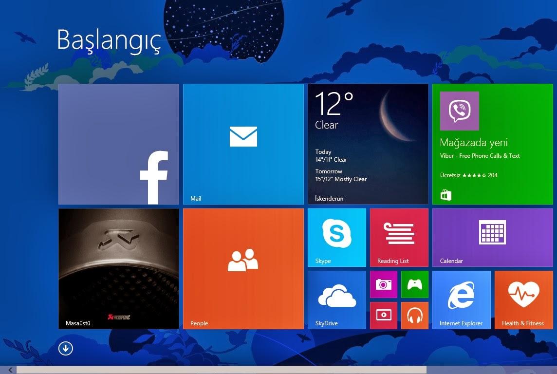 Microsoft Project Siena