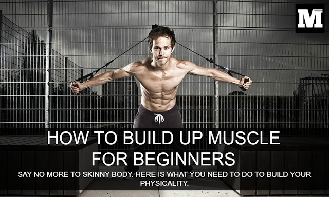 How to build up muscle for beginners