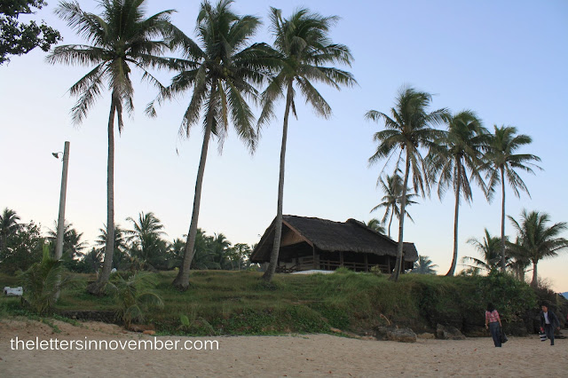 nipa hut along the beach with coconut trees