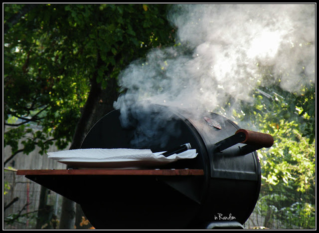 art of grilling