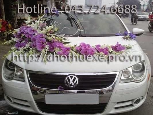 Cho thuê xe cưới Volkwagen Eos - xe cưới mui trần đẳng cấp