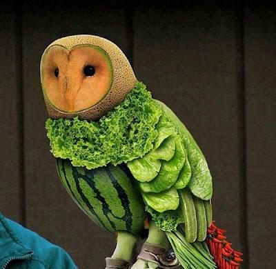 Động vật làm từ trái cây