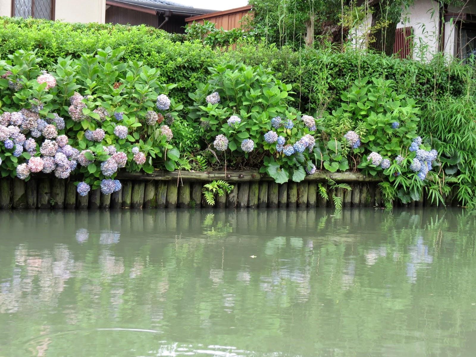 日本水乡 - 九州 柳川 - 长线旅游,特色景点,郊游