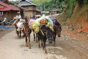 Road in Mường Tè