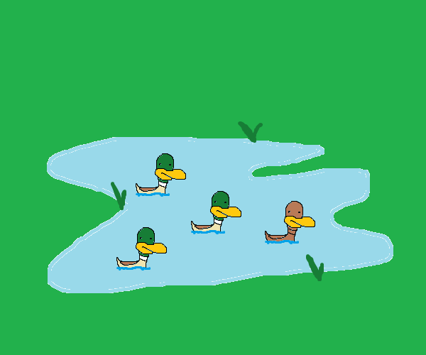 Duck pond cartoon images for Duck pond water